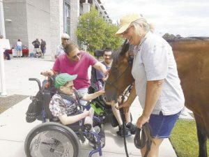Therapy Horse Danny and young man in a wheel chair.